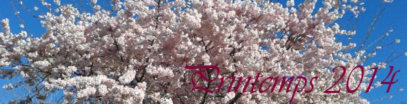 bandeau printemps 2014